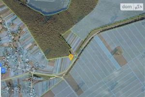 Продается земельный участок 36 соток в Тернопольской области