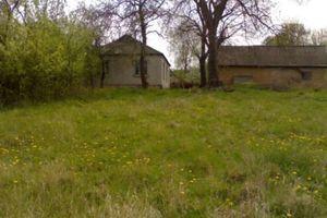 Куплю приватний будинок в Немирові без посередників